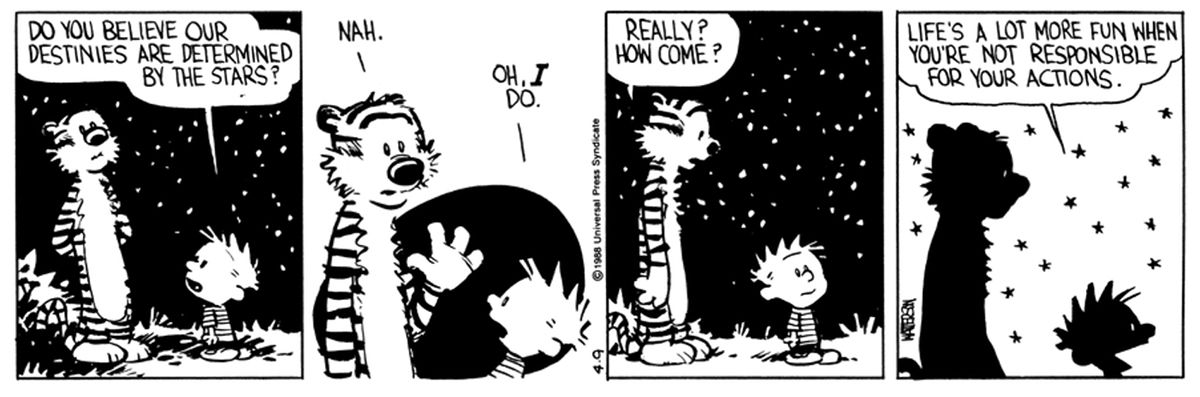 Calvin and Hobbs cartoon about actions.